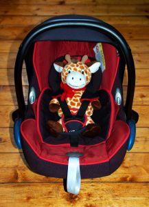 1155335_giraffe_in_baby_seat_.jpg