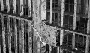 1226063_prison_cells_1.jpg