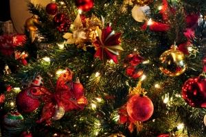 1260937_christmas_tree_4.jpg
