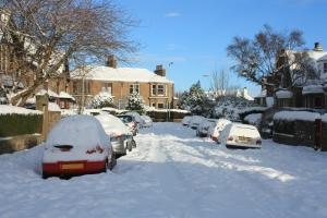 1322954_snowy_road_1.jpg