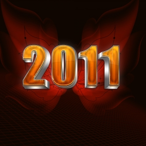 1323839_2011_new_year.jpg