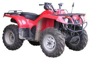 quad-1109243-m.jpg