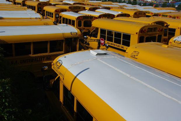 schoolbus5.jpg
